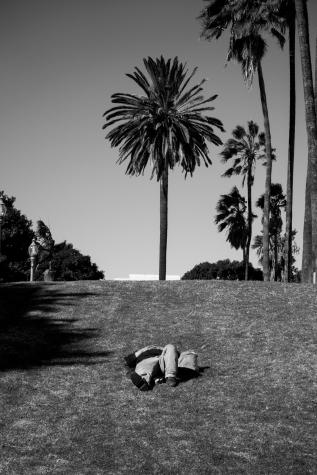 Los Angeles 16/17